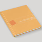 """""""Sibiu – Capitală Culturală Europeană 2007"""": Raport pentru Ultima Etapă a Studiului de Impact, iunie-iulie [2008]"""